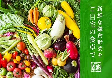 野菜宅配サービスのランディングページを制作