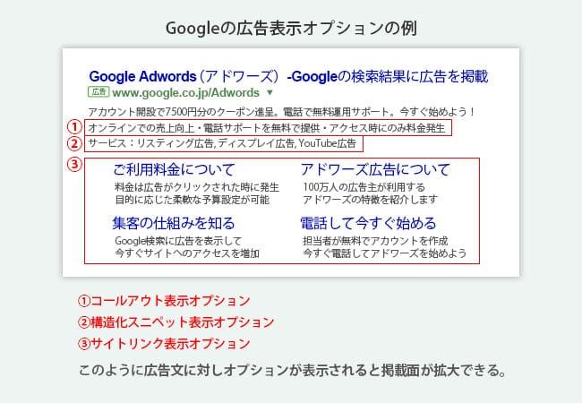 Googleの広告表示オプションの例